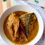 Sea Bass fish coconut curry