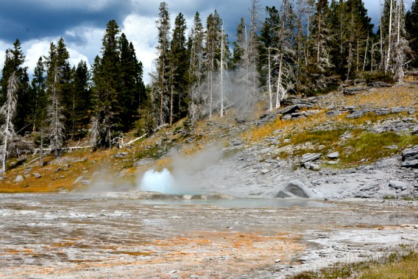 riverside geyser yellowstone park