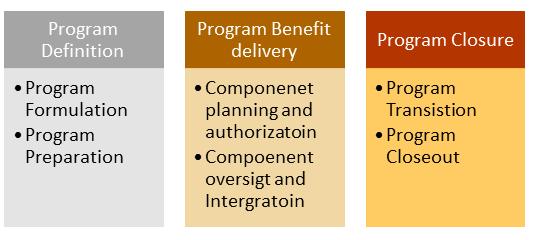 saf international program management lifecycle