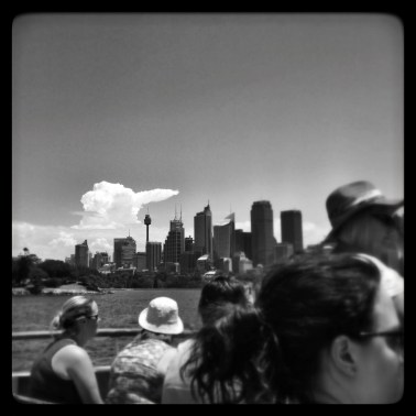 big bird cloud