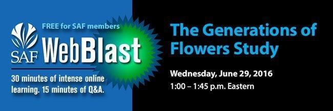 WebBlast Generations of Flowers Study
