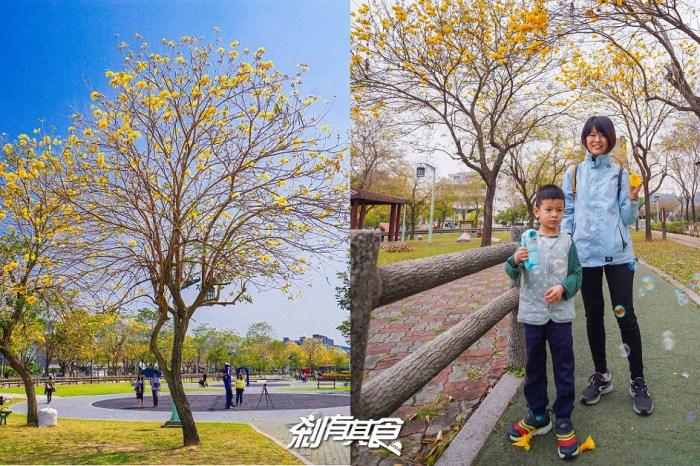 廍子公園 | 台中最美的黃金公園 黃金風鈴木盛開中! 適合帶小孩放電 (2021花況)