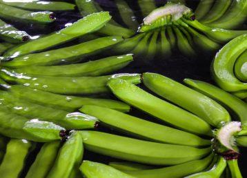dioxido de cloro banana