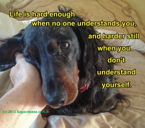 Life Is Hard Enough When No One Understands You, and Harder Still When You Don't Understand Yourself