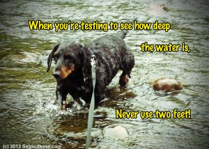 When You're Testing To See How Deep the Water Is, Don't Use 2 Feet!