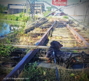 G on the rails 2