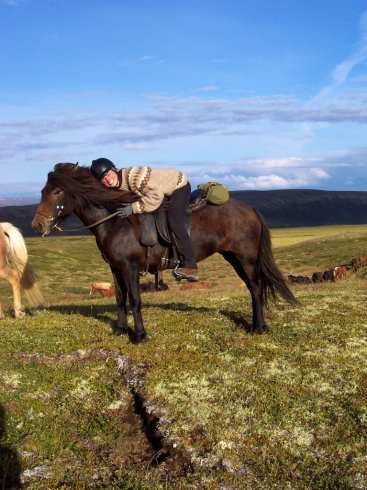 Icelandic horse & a happy guest