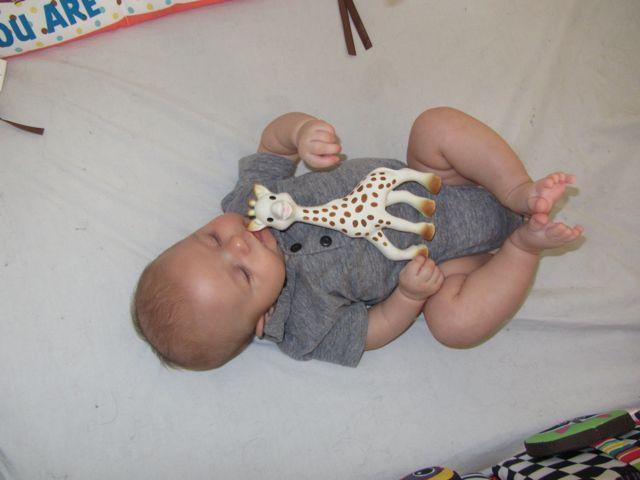 sophie the giraffe - 2