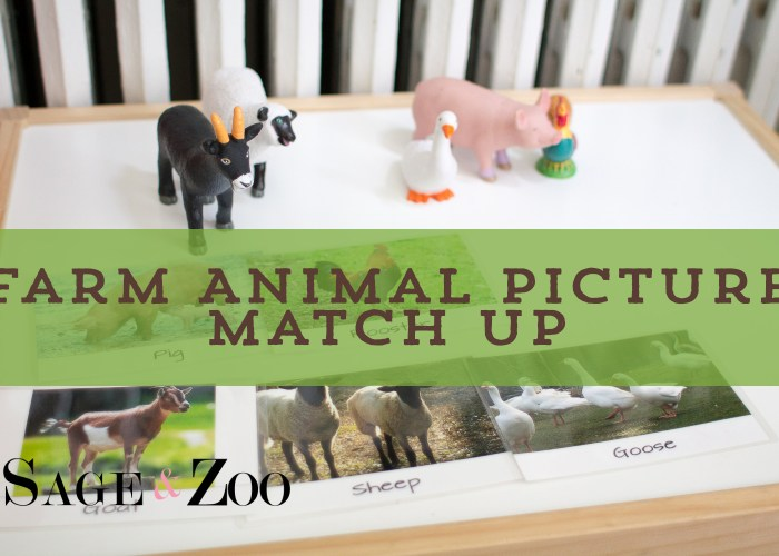 Farm Animal Picture Match Up