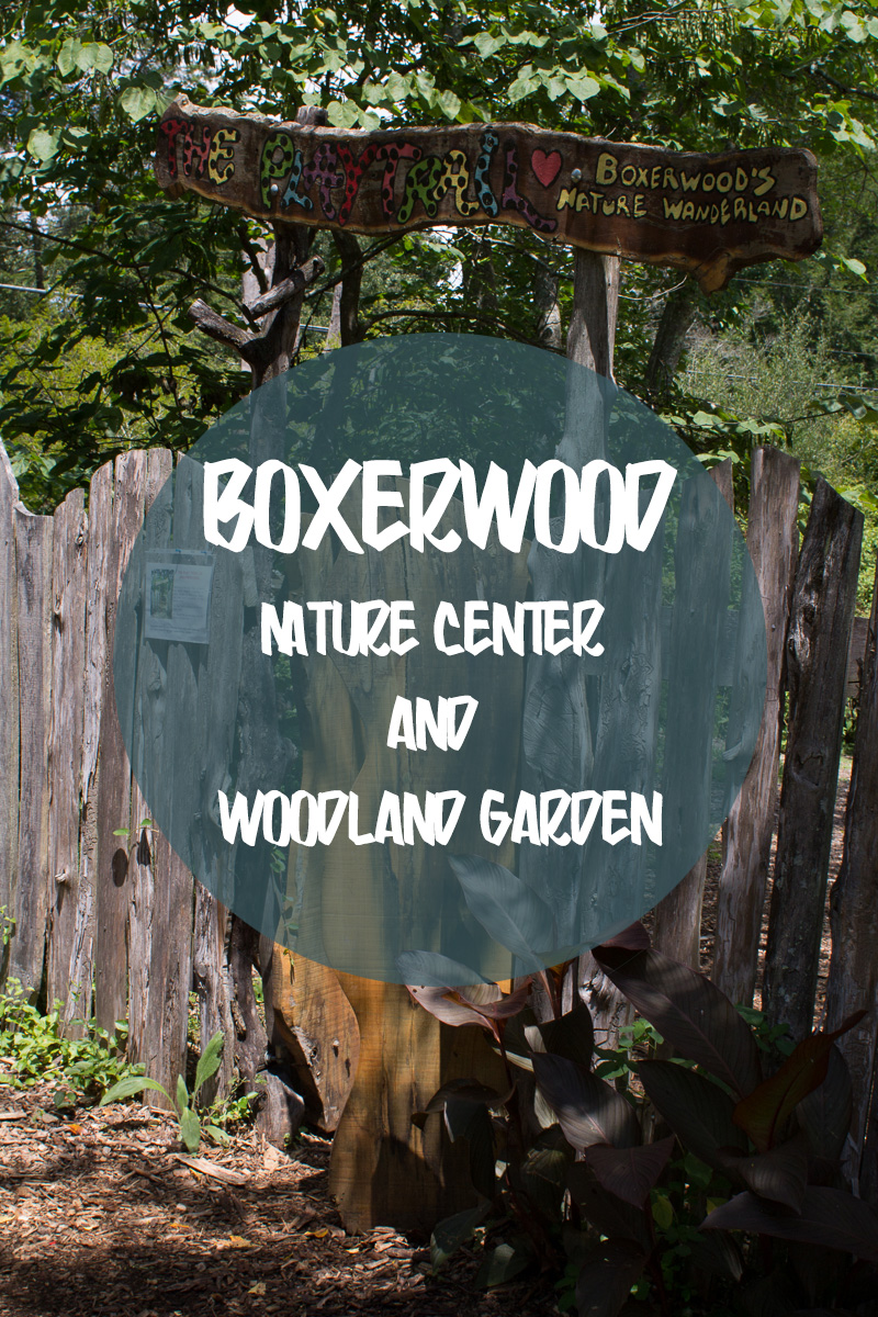 Boxerwood Nature Center Woodland Garden