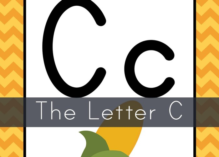 The Letter C- Toddler Unit