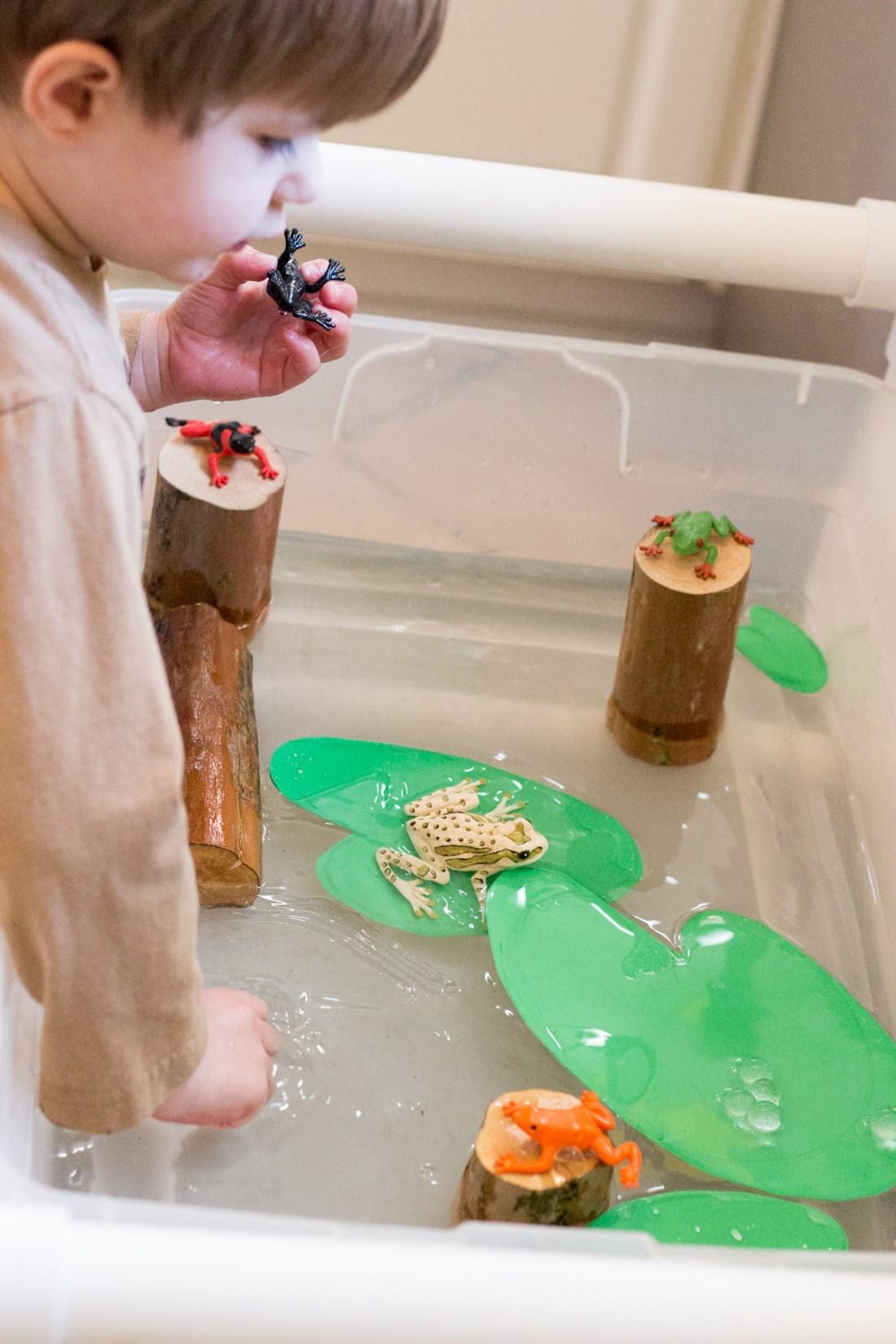 Frog and Tadpole Sensory Bin-5