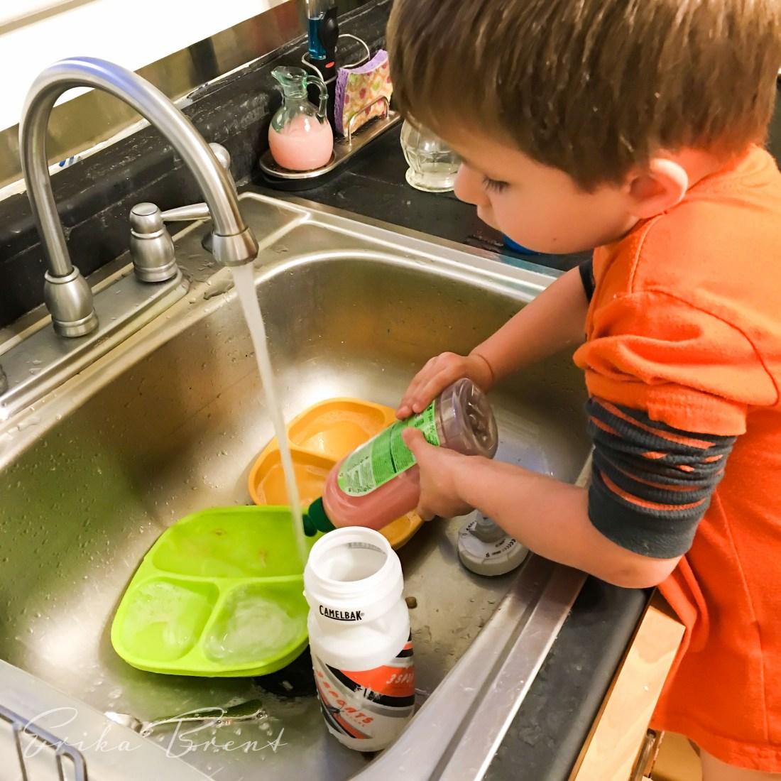 Frosch Pomegranate Dishwashing Liquid
