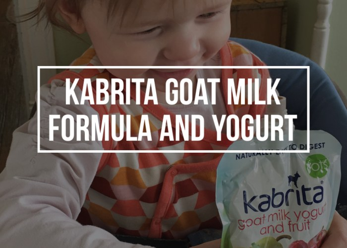 Kabrita Goat Milk Toddler Formula and Yogurt Review