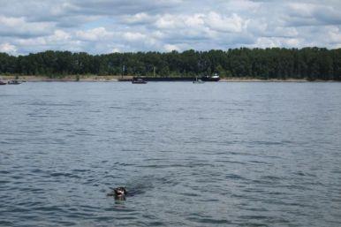 That's Washington across the river.
