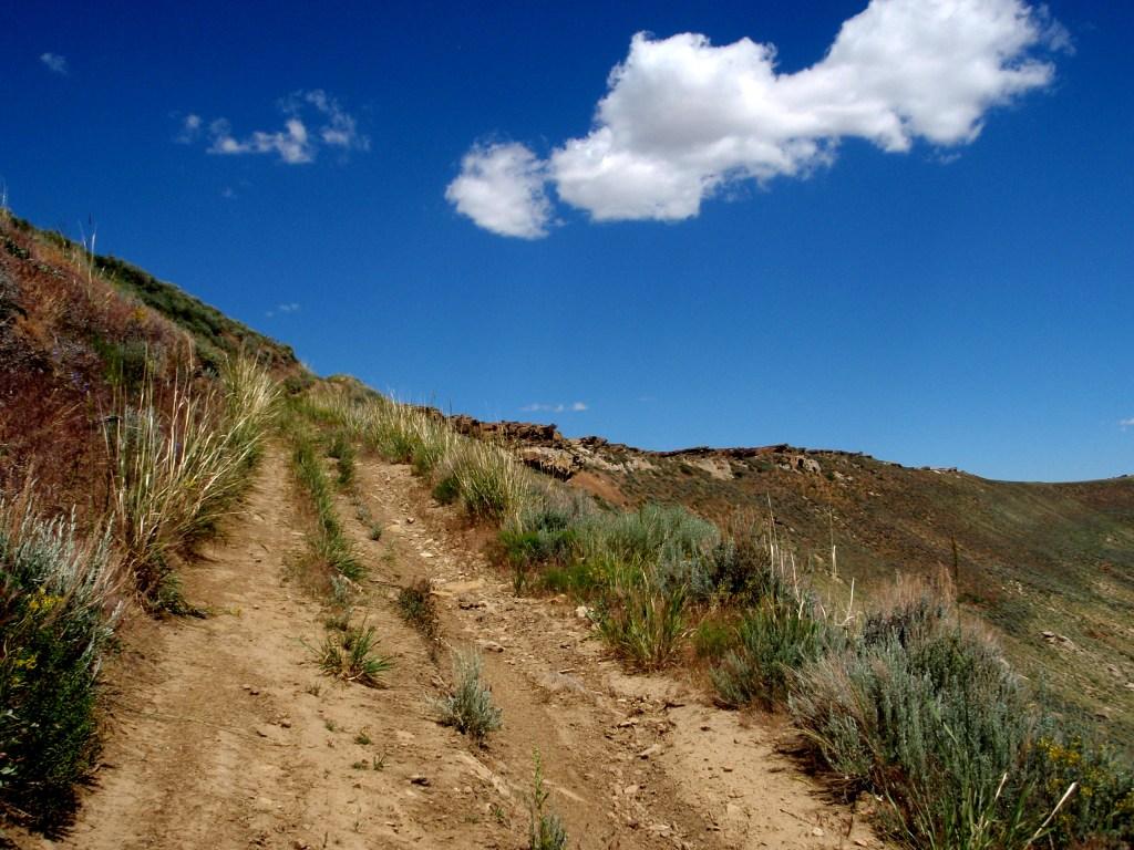 wide trail