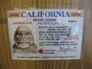 bigfoot ID