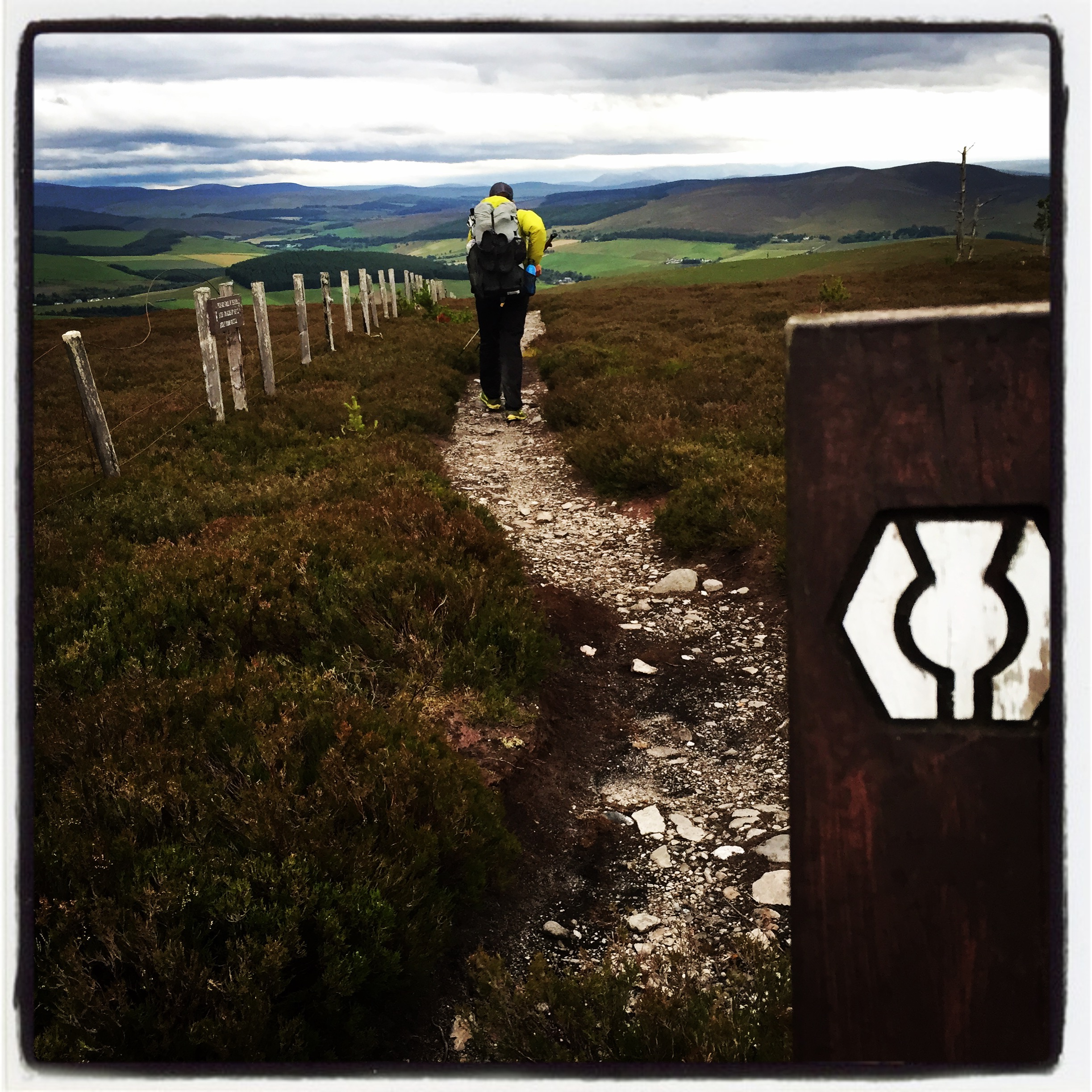 trail through the heathers to The Glenlivet, one of many distilleries along the Speyside Way