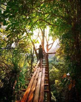 adventure boardwalk branch bridge