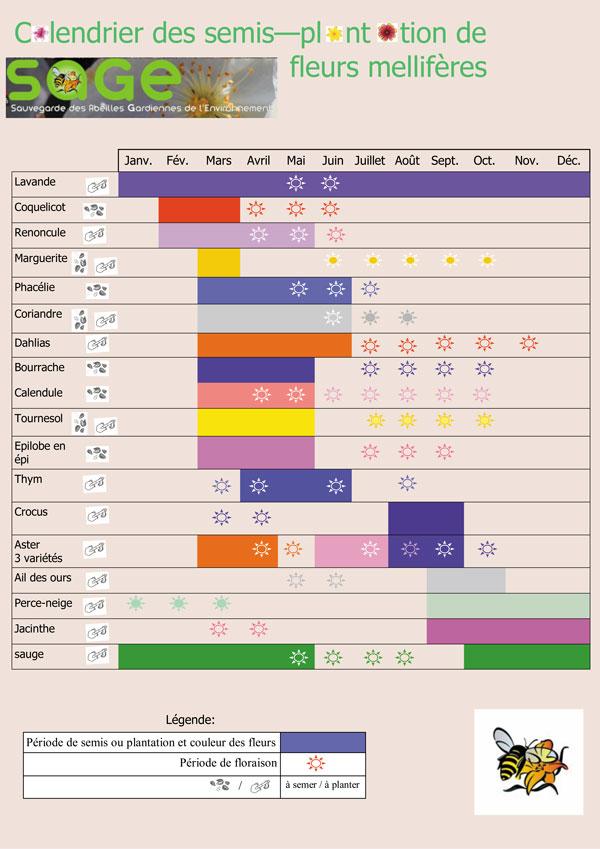 2016-calendrier-fleurs-mell