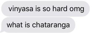 what is chaturanga