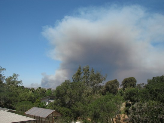 The Las Pulgas fire as seen from southeast of the San Luis Rey river about 20 hours after it began.