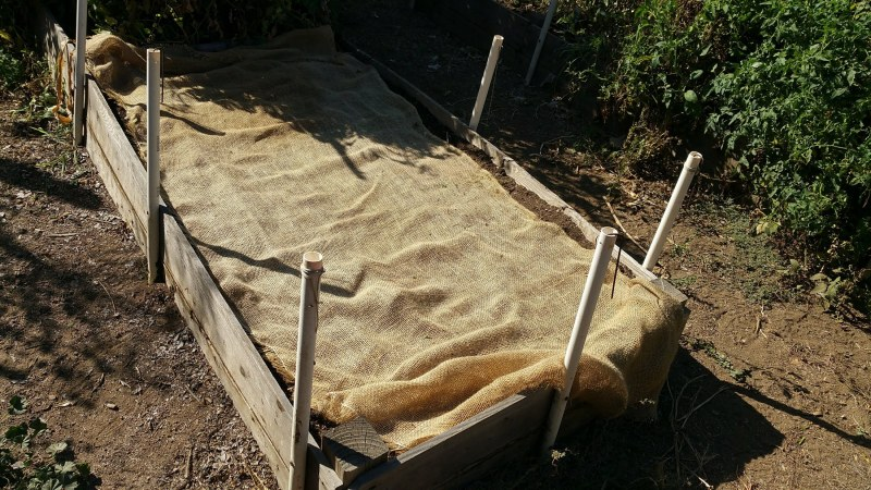 burlap ground cover mulch