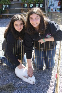 Sag Harbor Petting Zoo