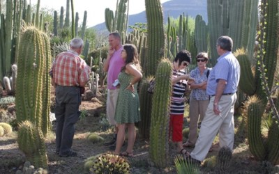 Cactus Working Group