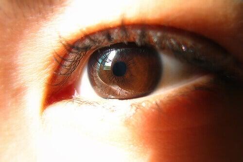 brown-eye-starbooze