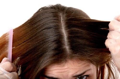 saç  Elma Sirkesi: Güzellik Rutininize Yeni Bir İlave F hair