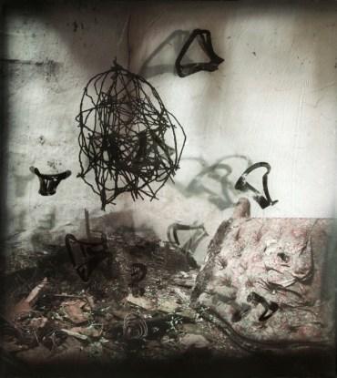 Gabriela Morawetz - Matière de perception