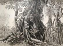 François Houtin - Arbre de vie n°3 - Rio, Parque Lage et Jardin Botanique