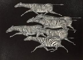 Mario Avati - Six zèbres courant...