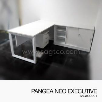 PANGEA NEO EXECUTIVE-SAGTCO-A-2--OFD-EX-123