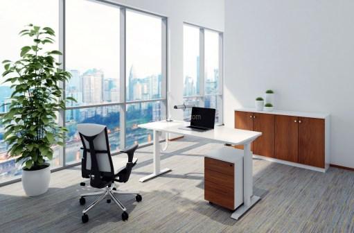 Pangea Adjustable Desk (OFD-HAD176)