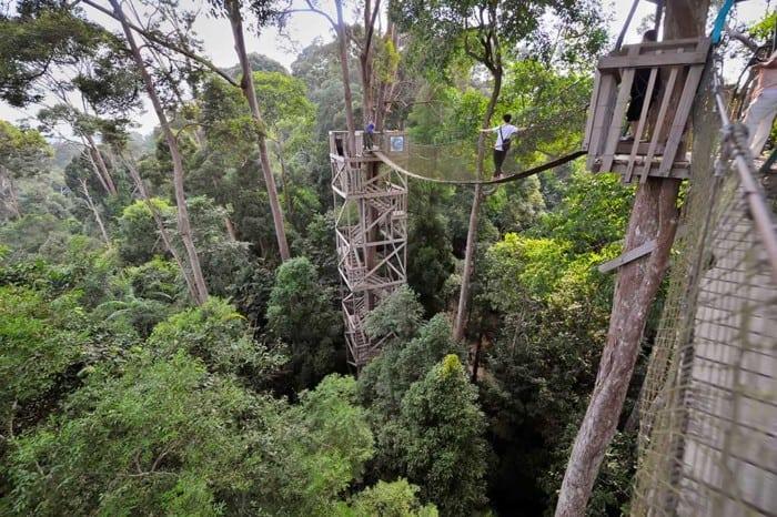 Wisata Balikpapan Bukit Bangkirai
