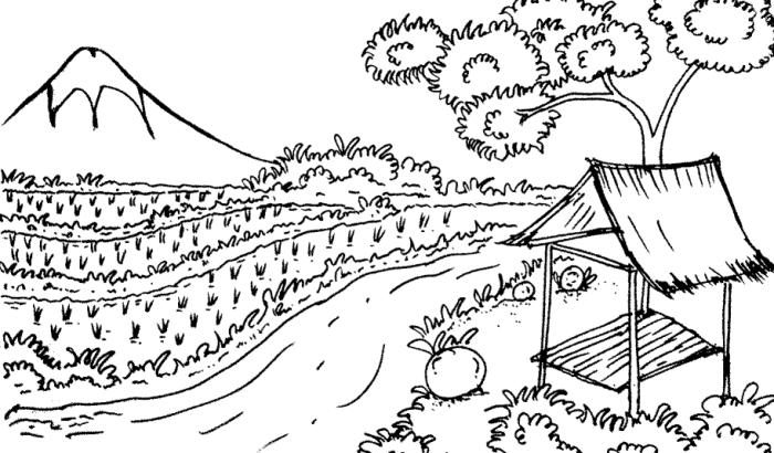 Sketsa Pemandangan Sawah