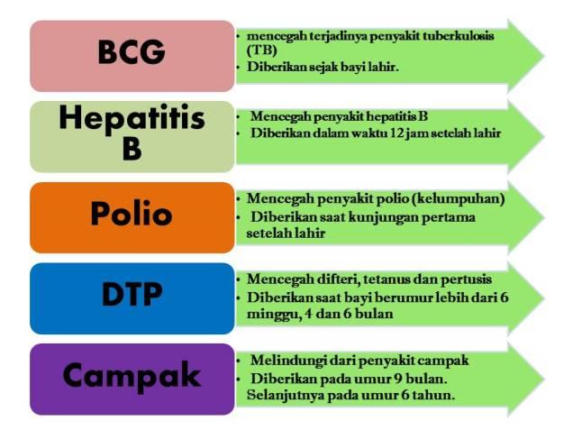 lima imunisasi dasar lengkap