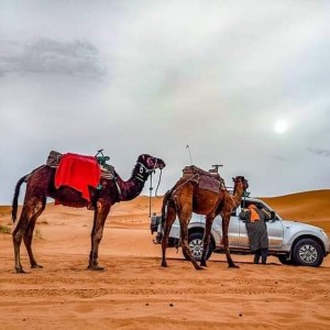 5 days desert tour from marrakech to fes