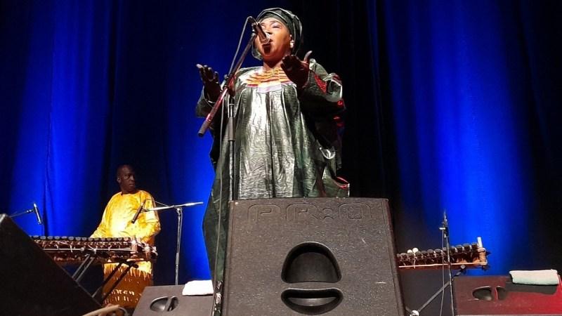 Musique mandingue : à la découverte du super trio Da kali, qui a enregistré «Ladilikan»