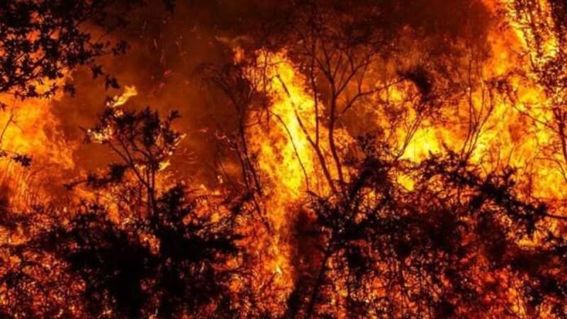 Environnement : comment expliquer les catastrophes naturelles?