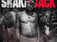 EP: Slim 400 - Shake Back