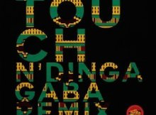 Soultronixx, Luyo, Bluesoil & Decency - Touch (N'dinga Gaba Diplomacy Soul Remix)