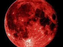 TmokMusiQ - Red Moon