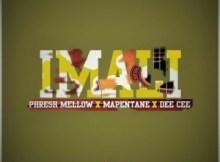 Phresh Mellow ft Mapentane & Dee Cee - iMali