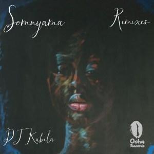 Dj Kabila & WendySoni - Somnyama (Lemon & Herb Dubstramental)
