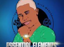 Mash'Tones - Essential Elements EP