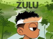 MIXTAPE: Nasty C - Zulu (Zip File)