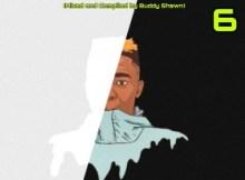 Buddy Shawn - Saka Skelem Vol.6 (Thato's Birthday Mix)